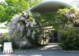 Malivoire tasting room entrance Spring